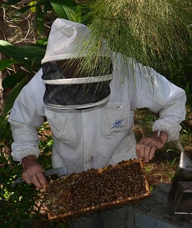 Avant de s'entretenir avec les apiculteurs, Nicolas Metzdorf a effectué la visite guidée d'un rucher.