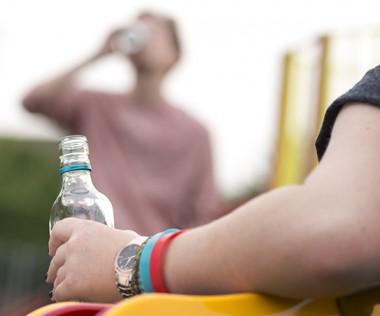 Les textes arrêtés par le gouvernement visent à réprimer l'ivresse publique manifeste et  la consommation d'alcool dans les lieux publics, à renforcer la protection des mineurs et à interdire toute forme de publicité pour l'alcool.