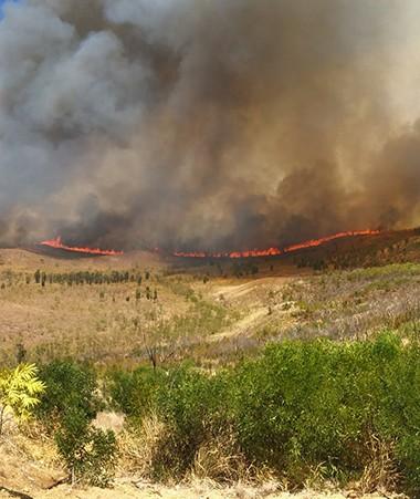 1 200 hectares brûlés dans la matinée du jeudi 19 octobre, du côté de Bangou (Païta).