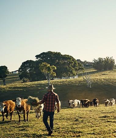 L'Agence rurale, qui absorbera l'Erpa et l'Apican, permettra notamment de rationaliser les coûts.