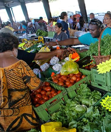 La Chambre d'agriculture de Nouvelle-Calédonie assure la gestion du site du marché de gros de Ducos (© CANC).