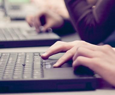 L'expérimentation de paiement en ligne a été menée par le gouvernement entre le 8 septembre et le 6 octobre.