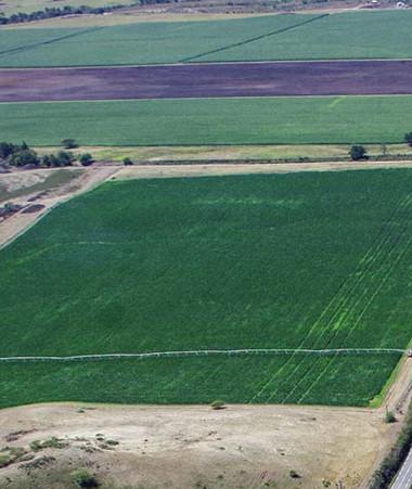 Le patrimoine immobilier de la collectivité Nouvelle-Calédonie représente à lui seul environ 53 % des terres situées sur la Grande-Terre, soit environ 865 000 hectares.