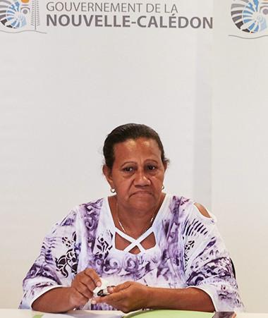 Les membres du gouvernement Valentine Eurisouké et Jean-Pierre Djaïwé ont présenté le parcours santé Do Kamo, mardi 10 novembre au gouvernement.