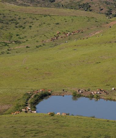 Avec La Niña, la saison chaude ne devrait pas être marquée par une période de sécheresse pour les agriculteurs.