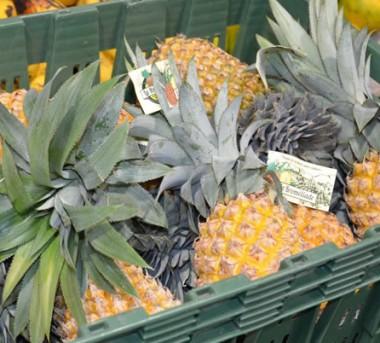 La Coop 1 fédère douze exploitations de fruits, légumes, tubercules, champignons et plantes à parfum.