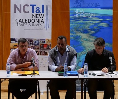 Philippe Germain, Didier Poidyaliwane, Sébastien Sarramegna de NCT&I (2e à d.) et le service de la Coopération régionale ont animé la restitution de la mission du gouvernement en Papouasie.