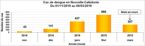 2019.03_dengue.jpg