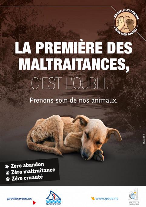 Maltraitance animale à l'affiche