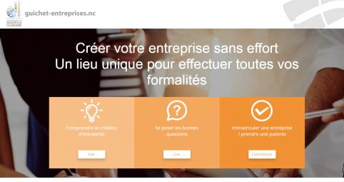 capture_guichet_entreprises.png
