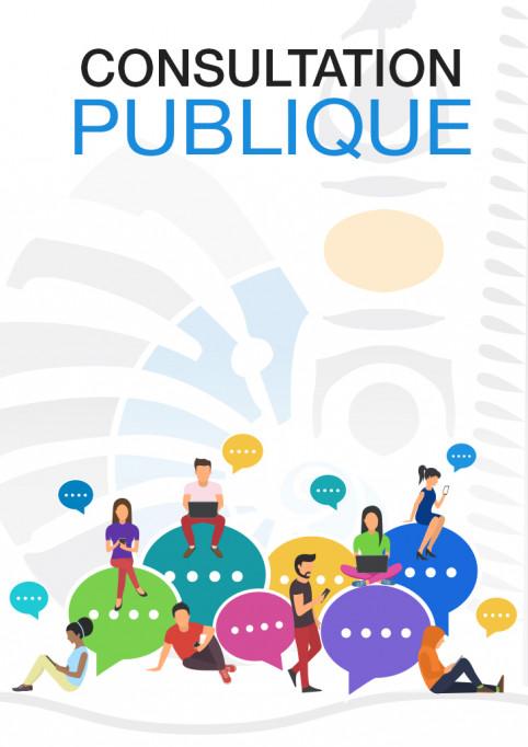 consultation-publique2.jpg
