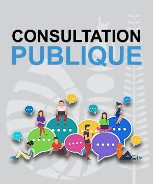 consultation_publique.png