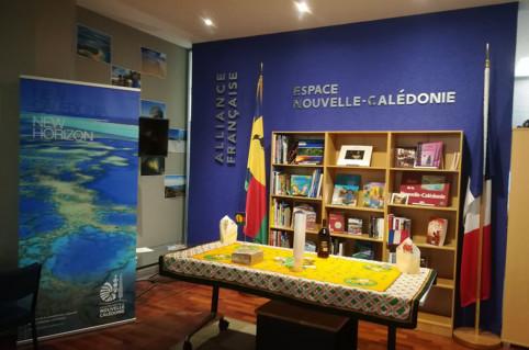 À Wellington, Auckland, Palmerston North et Christchurch, les Alliances françaises de Nouvelle-Zélande, disposent toutes d'un espace dédié à la culture et à la littérature calédonienne.