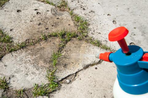 En Calédonie, les particuliers sont les principaux consommateurs de  pesticides (herbicides, insecticides, fongicides).