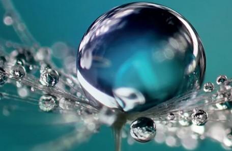 Forum H2O, vers une politique partagée de l'eau