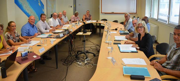 Le comité de gestion du FIP est co-présidé par Yoann Lecourieux, chargé notamment du budget et des relations avec les communes, et le haut-commissaire, représenté par Rémi Bastille, secrétaire général du haut-commissariat de la République.