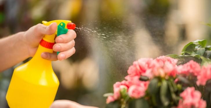 Les pesticides sous haute surveillance