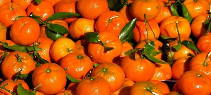 La réglementation encadrant les produits chimiques agricoles et à usage de jardin va entrer en application.