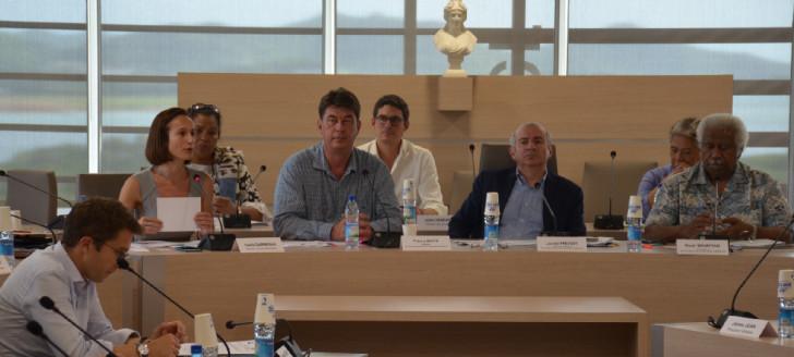 Le Comité de suivi s'est déroulé sous la présidence du haut-commissaire et du président du gouvernement, en présence notamment d'Isabelle Champmoreau, membre du gouvernement en charge de la lutte contre les violences intrafamiliales.