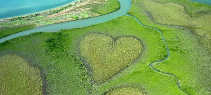 La préservation de la biodiversité fait partie des thématiques prioritaires des projets qui seront cofinancés par le Fonds Pacifique cette année.